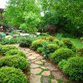 Creating-A-Garden-That-Brings-Joy