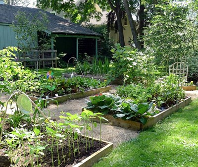Useful-Ideas-to-Use-the-Excess-Soil