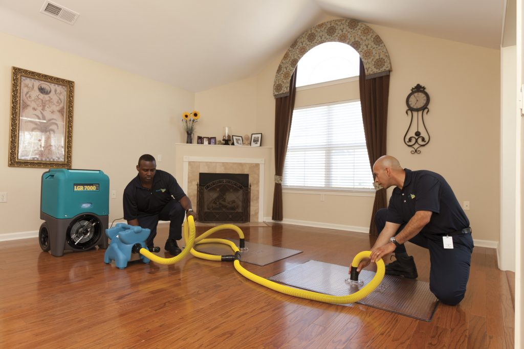 Hiring-a-Professional-Water-Damage-Service