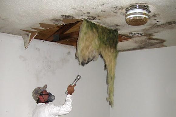 sacramento-home-inspections