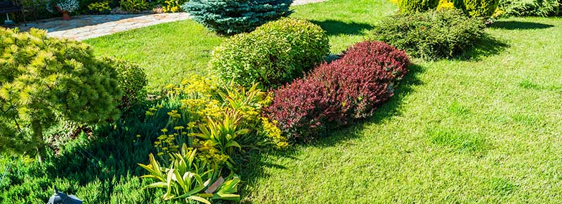 How to contract gardening services tips my horizon home for Home gardening services