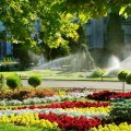 Hiring-Garden-Irrigation-Systems-Contractor