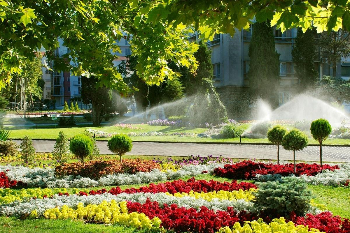Hiring-Garden-Irrigation-Systems-Contractor