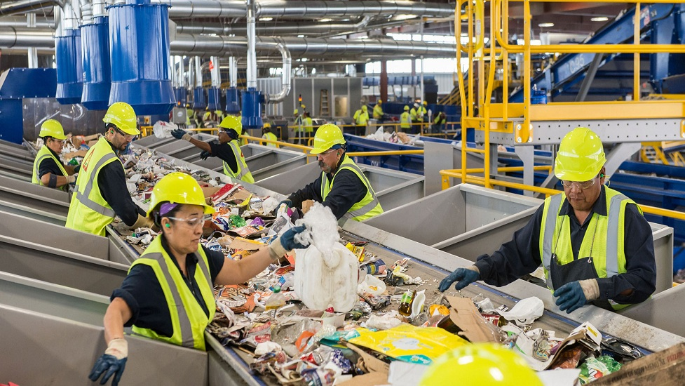 Enviro-Disposal Group – Should I Hire Them for My Waste Removal Jobs