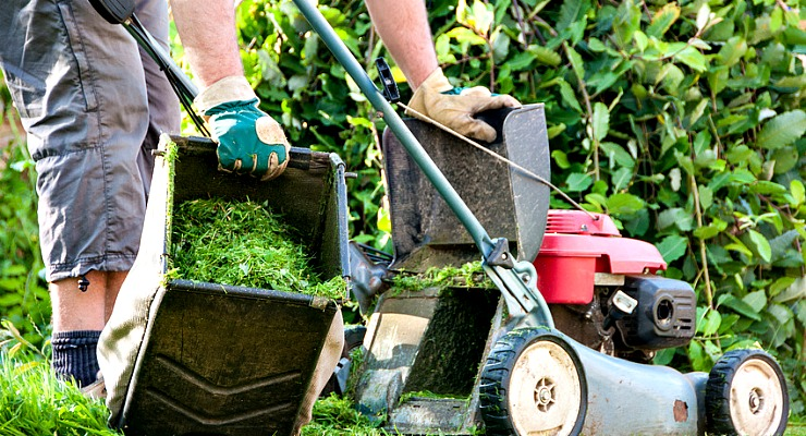 Outsourced-Landscaping-Service-for-Garden