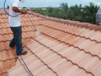 Clean Roofs Professionally