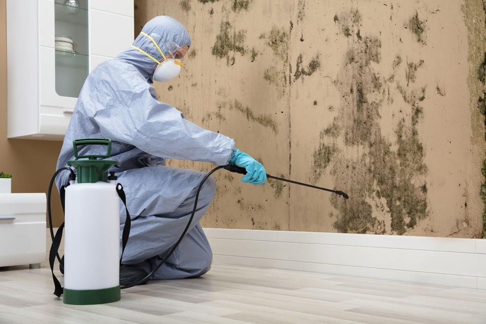 How Long Should Pest Control Last
