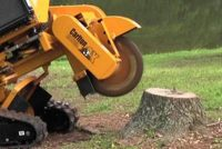 How Long Does It Take To Grind A Stump Down