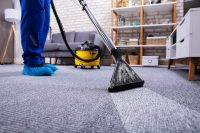 Clean Carpet - Routine Maintenance